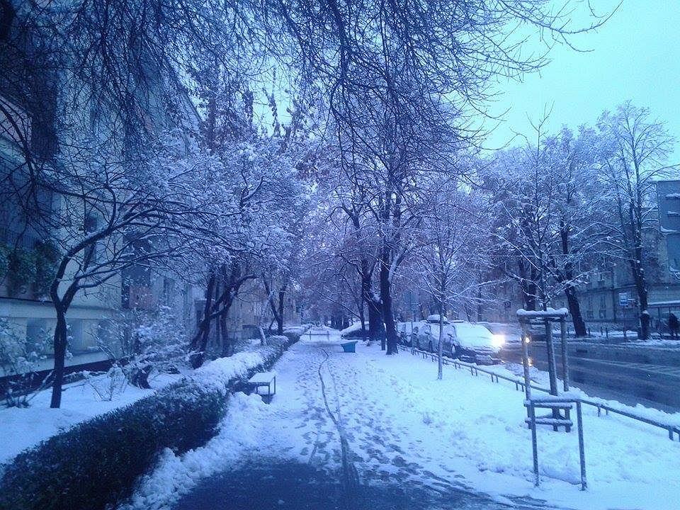 Warszawa pokryła się śniegiem