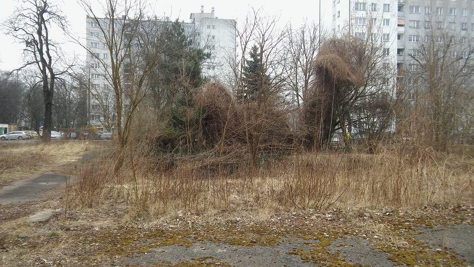 Działka przy ul. Piłsudskiego, gdzie powstanie regionalny ośrodek TVP Gorzów