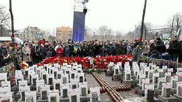 22.02.2015 r. - Kijów. Obchody I rocznicy Majdanu