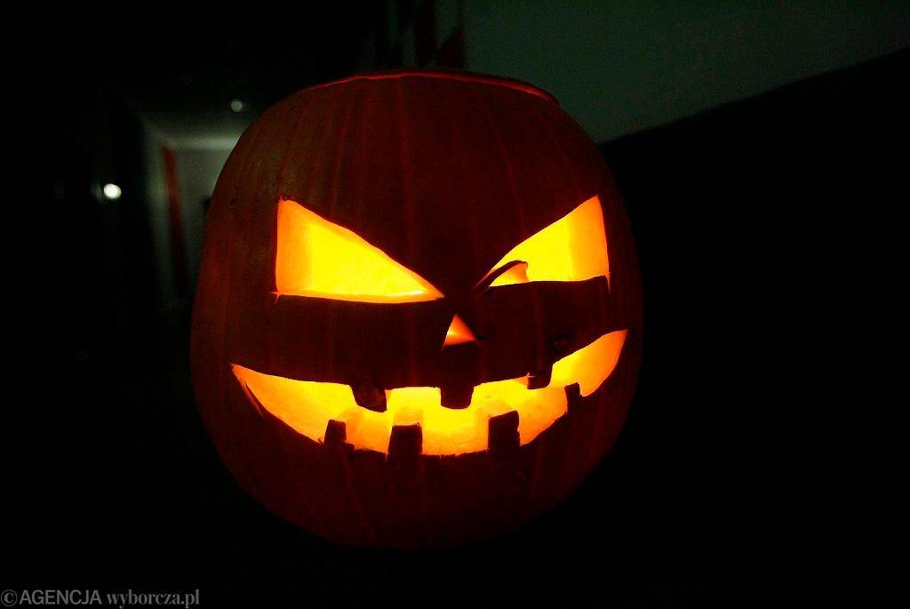 Halloween, zdjęcie ilustracyjne