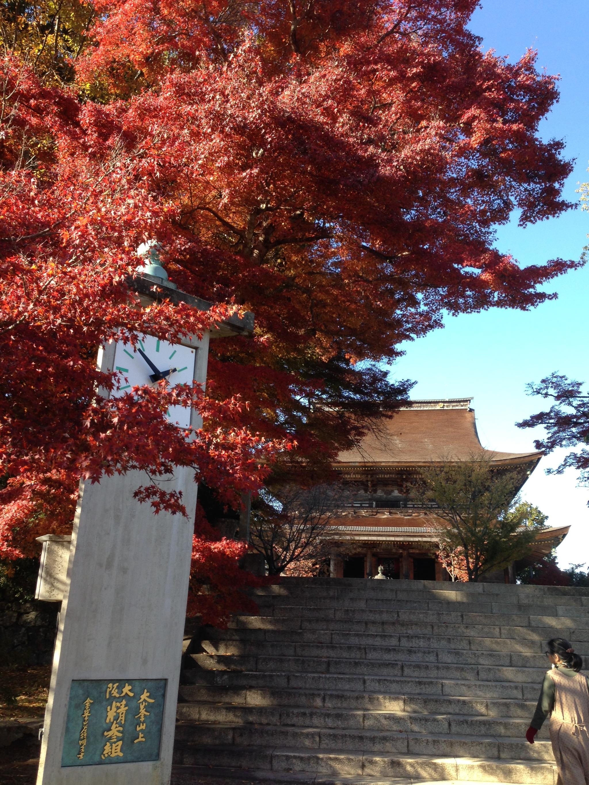 Szintoistyczna świątynia w miejscowości Yoshinoyama nieopodal Kioto (fot. Marta Karsz)