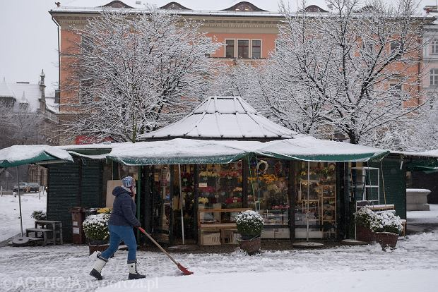 Zdjęcie numer 19 w galerii - Wrocław pod śniegiem. Zobacz zimowe zdjęcia z centrum miasta [FOTO]