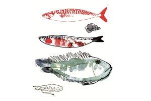 Targi rybne