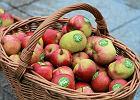 """W Rosji rusza """"gorąca linia"""". Donosy na zjadaczy polskich jabłek"""
