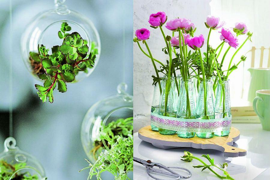 Jakie pojemniki do kwiatów?