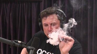 Elon Musk w programie Joe Rogana