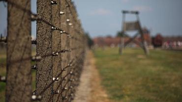 Muzeum Auschwitz-Birkenau w 2019 roku (fot. Jakub Włodek / Agencja Gazeta)