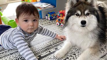 Wyjątkowa relacja psa i dziecka