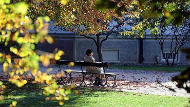 Babie lato w Warszawie. Aż do następnego weekendu ma być ciepło i słonecznie jak w lecie. Temperatura około 20 stopni. W niedzielę Warszawa i jej mieszkańcy wygrzewali się w słońcu. W parkach, nad Wisłą, przez Pole Mokotowskie wędrowały tłumy.