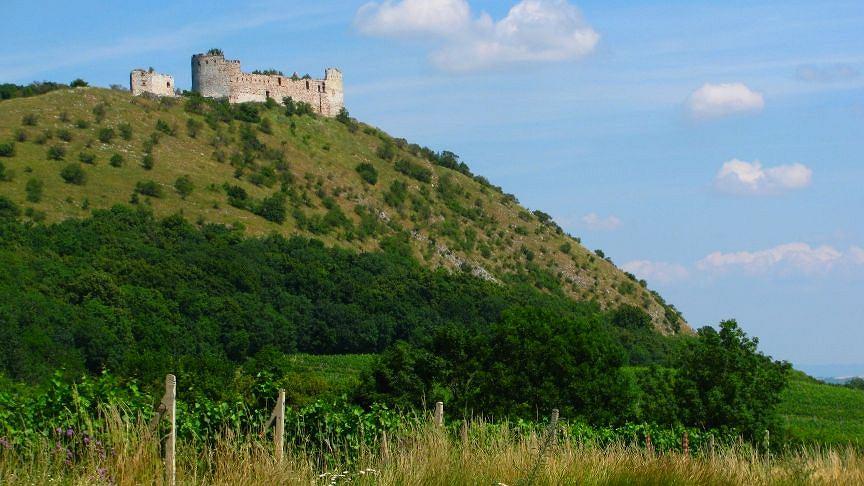 Wzgórza Palavy