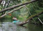 Polak lubi kajak. Fajne, mniej zatłoczone rzeki na spływ kajakowy - na weekend albo wakacje [WASZE PROPOZYCJE]