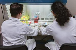 """Naukowcy zamienili komórki rakowe w tłuszcz. """"Całkowicie przestały się rozprzestrzeniać"""""""