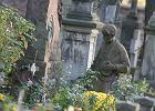 Chciał świeckiego pogrzebu teściowej na Powązkach. Ksiądz zażądał zaporowej ceny
