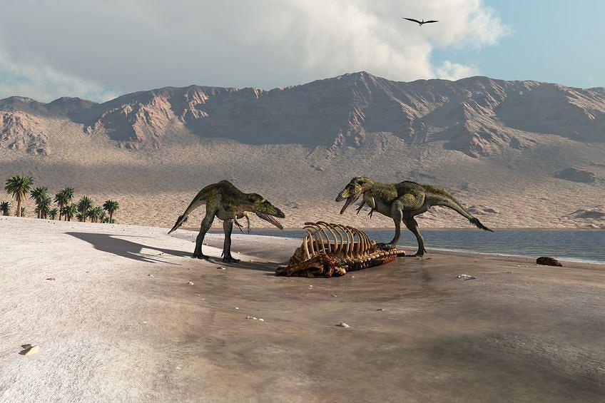 Zdjęcie numer 3 w galerii - Czy dinozaury zginęły inaczej, niż przypuszczano?