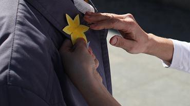 Żonkile. Żółte kwiaty na ubraniach - co oznaczają?
