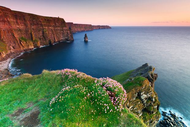 Moherowe Klify to jeden z najpiękniejszych odcinków wybrzeża Irlandii / shutterstock