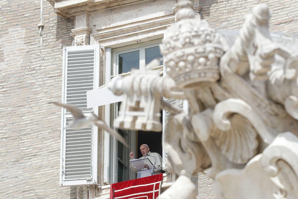 Watykan. Papież apelował o pojednanie i pokój na Ukrainie