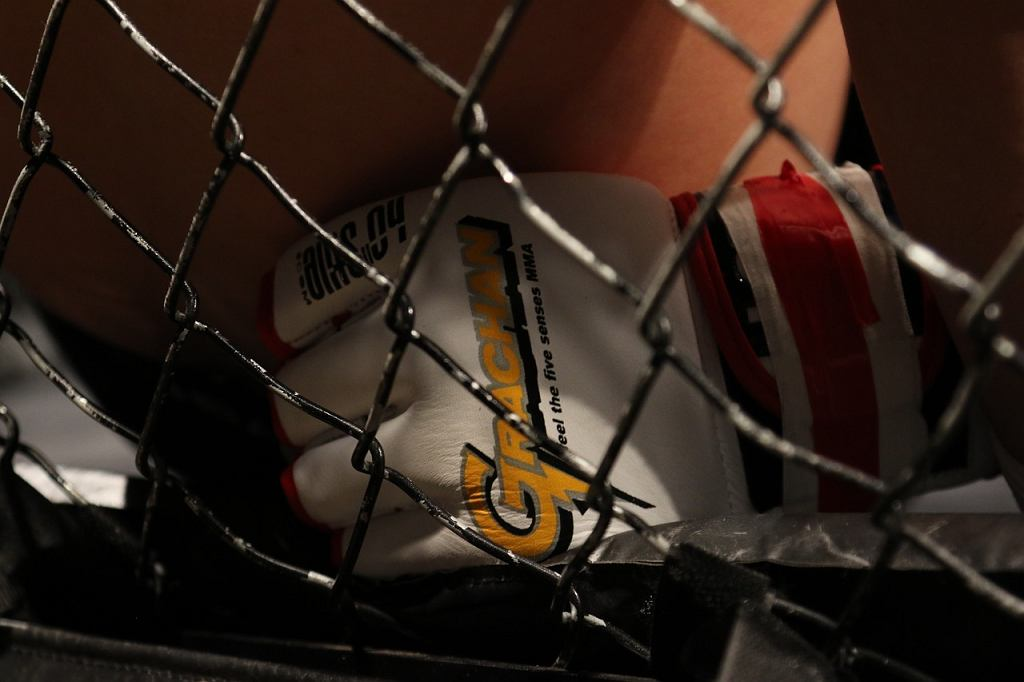 UFC: Dos Anjos - Edwards, karta walk