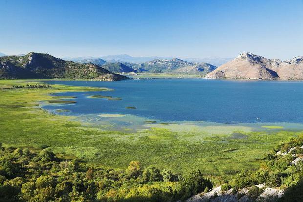 Jezioro Szkoderskie na terenie Czarnogóry / fot. Shutterstock