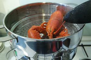 W Biedronce już wkrótce kupicie homary! Czy łatwo je przygotować i jak je jeść? [SPRAWDZAMY]