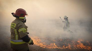 Pożar Biebrzańskiego Parku Narodowego