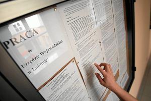 W Polsce może powstać 20 tys. nowych miejsc pracy