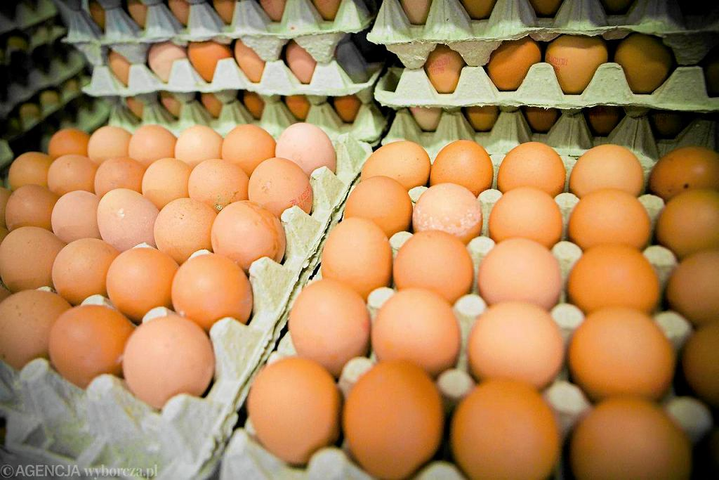 Najlepsze są jajka z chowu oznaczonego 0 i 1. Są jednak dwa razy droższe