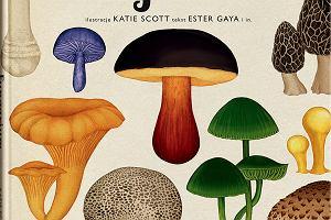 Fungarium. Recenzja ilustrowanej książki o grzybach
