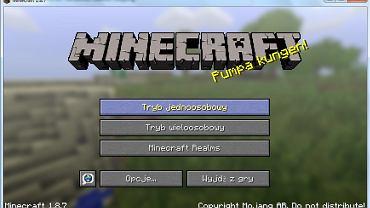 Demo Minecraft