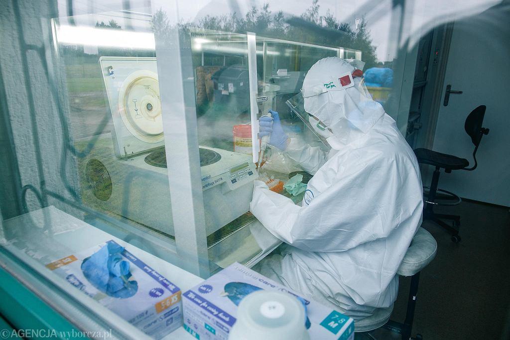 Pandemia koronawirusa. Laboratorium Diagnostyki wykonuje badania na obecność COVID-19. Poznań, Instytut Genetyki Człowieka PAN, 14 października 2020