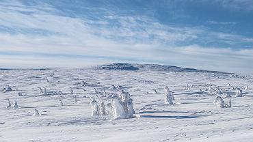 Zima w Polsce - na zdjęciu: Karkonosze