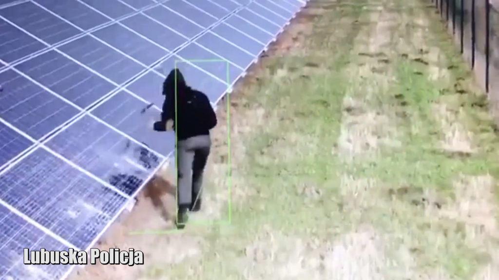 Mężczyzna zniszczył młotkami farmę fotowoltaiczną