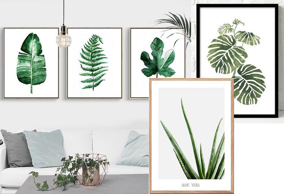 Plakaty Botaniczne Wnętrzarski Hit