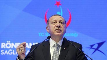 21.07.2017 Stambuł . Prezydent Turcji Recep Erdogan oskarża niemiecki rząd o próby wpłynięcia na inwestorów aby wycofali się z Turcji