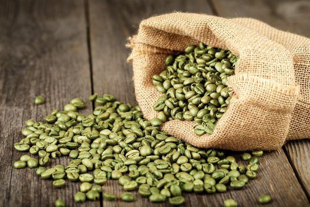 Czy zielona kawa to skuteczny środek na odchudzanie?