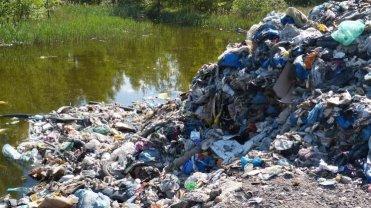 Odpady, nielegalnie wyrzucone w lesie w Przecieszynie