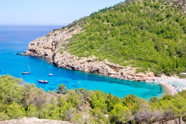 Zielone wzgórza Ibizy, Baleary / fot. Shutterstock