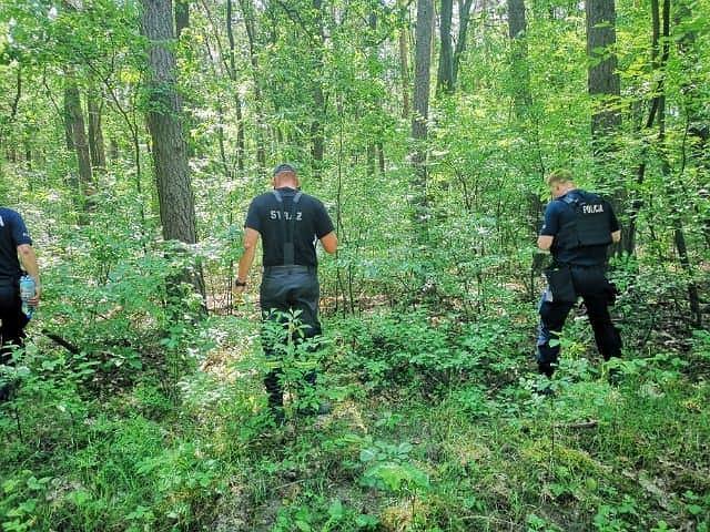 Ciało znalezione w lesie (zdj. ilustracyjne)