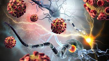Medycyna rozróżnia 80 chorób autoimmunologicznych