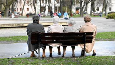 Od przyszłego roku każdy pracownik będzie oszczędzał na dodatkową emeryturę w ramach Pracowniczych Planów Kapitałowych (PPK). Odkładane środki uszczuplą pensje.
