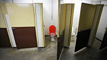 Toaleta (zdjęcie ilustracyjne)