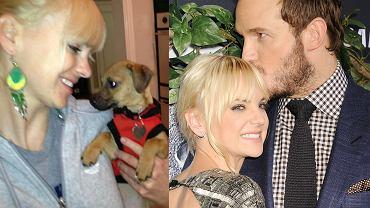 Anna Faris z psem, Anna Faris i Chris Pratt