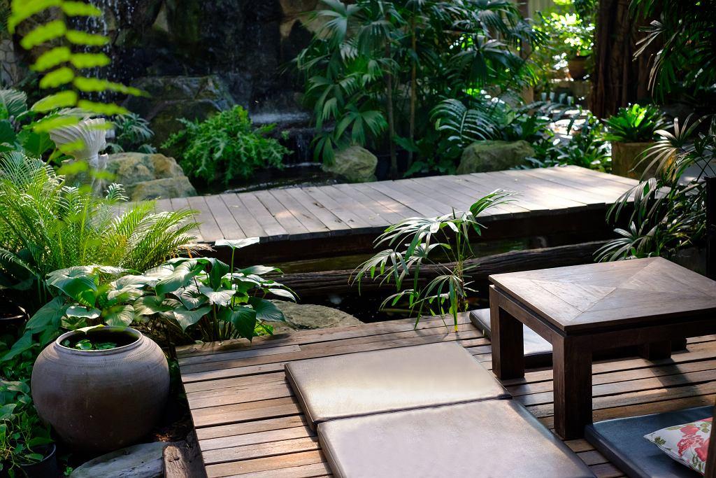 Ogród w japońskim stylu.