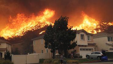 Pożary w Kalifornii zostały wywołane przez gałąź, którą wiatr rzucił na przewody elektryczne