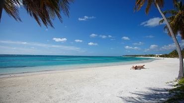 Dominikana to coraz popularniejszy kierunek