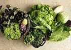 Świat sałat - jak korzystać z liściowego dobrodziejstwa