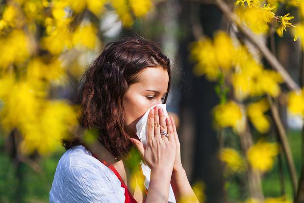 Alergia krzyżowa - objawy i leczenie. Jakie są alergeny krzyżowe?