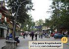 """""""Jest tu coś ciekawego poza Krupówkami?"""". Najlepsze teksty turystów odwiedzających Tatry i Zakopane"""