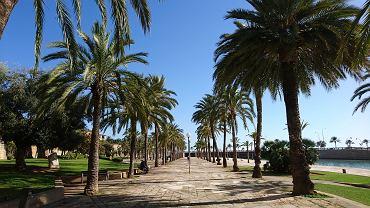 Palma De Mallorca / Majorka