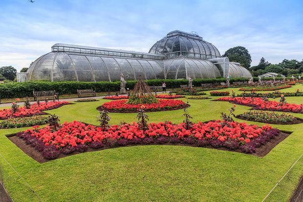 Królewskie ogrody botaniczne Kew Gardens